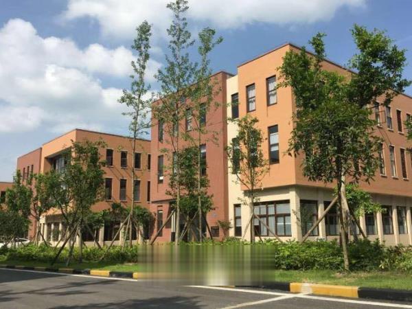 重庆两江新区《开发商直接租售标准厂房》《1000平米起》