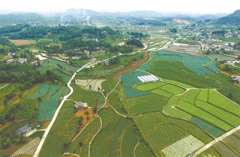 石楼县现代农业示范园区