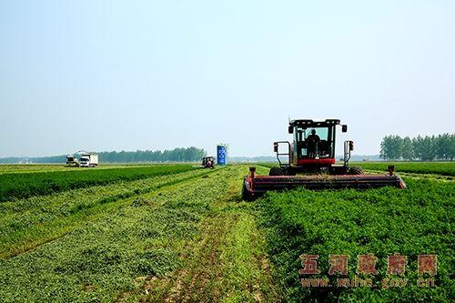 五河县硕果农业科技示范园