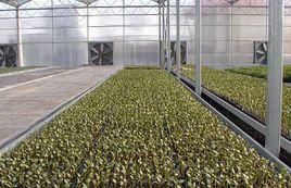 乐平市农业科技示范园