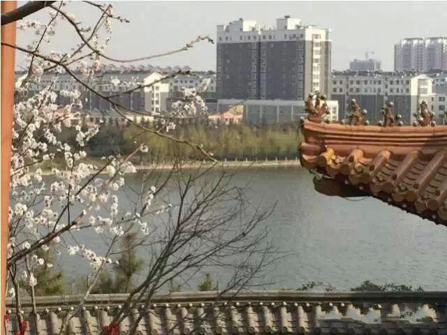 东阿县科技工业园