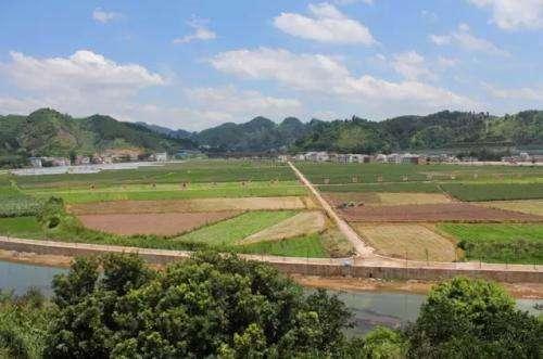 石阡县福峰珍稀苗木发展产业园