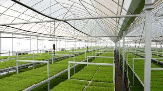 日喀则农业科技园区