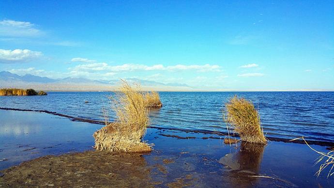可鲁克湖-托素湖湿地