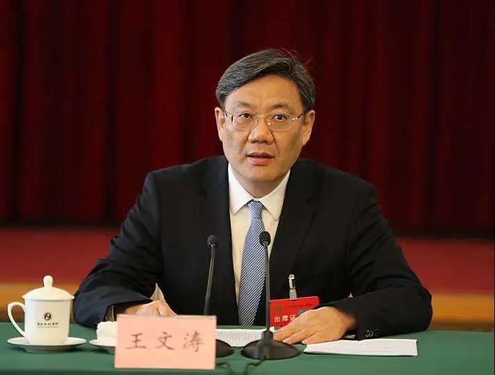 王文涛的「招商引资29条」