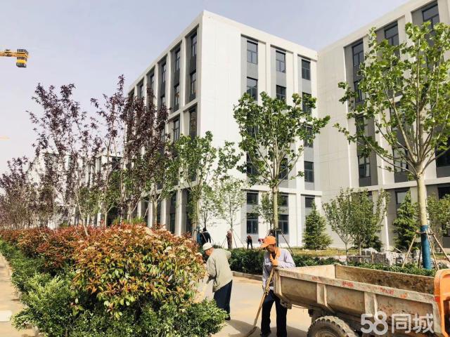 高新区1200平独栋厂房 首付2成 层高7.2米
