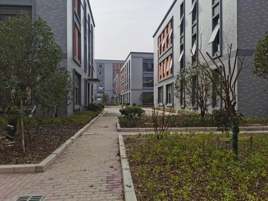 出售 杭州全新独栋标准厂房