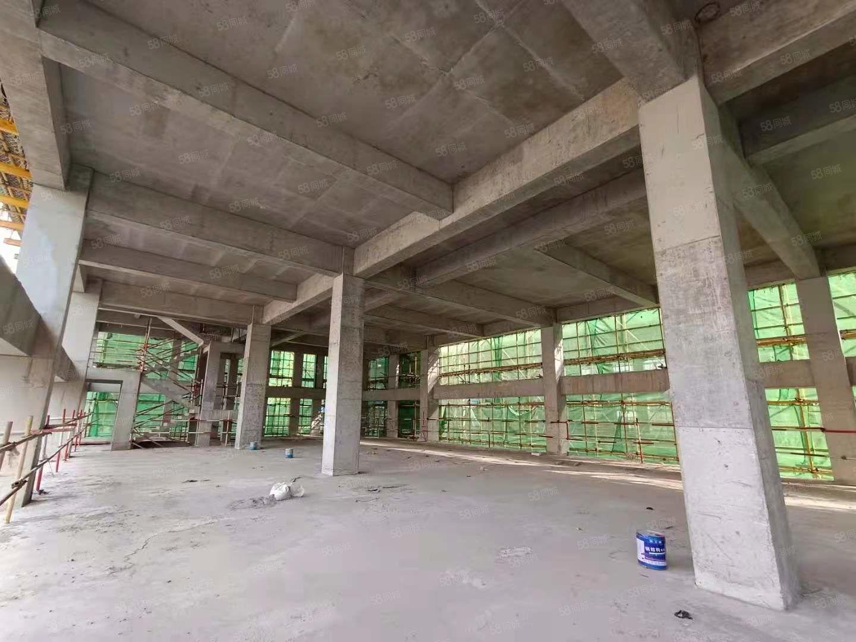 胶州西绝版2层生产厂房单层8.1米